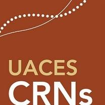 UACES – The Academic Association for Contemporary European Studies