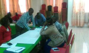 Group work: Development of action points