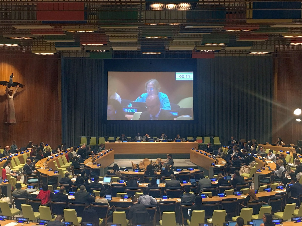 Multi-stakeholder hearings have been held as part of the preparatory process for the intergovernmental conference on international migration in 2018.
